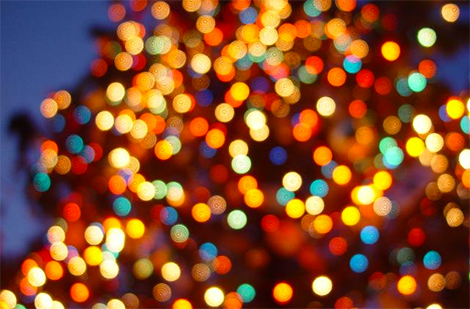 Christmas Lights 2021