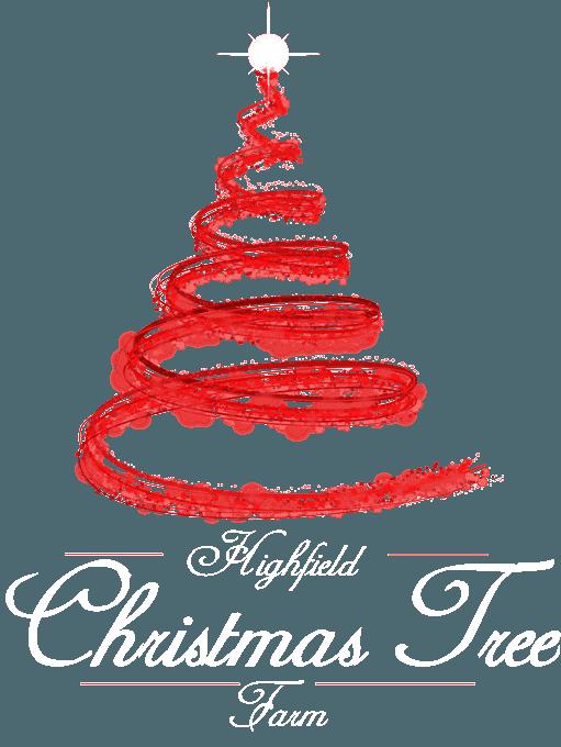 Highfield Christmas Tree